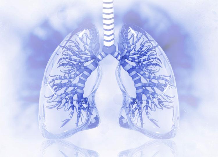 Spirometry Healthcare Services / Mediright